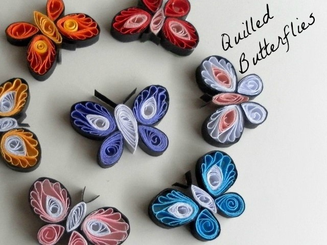 How to make paper quilled butterflies paper quilling for How to quilling designs